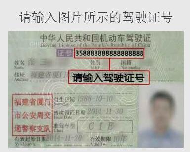 驾驶证扣分查询-个人驾驶证扣分明细查询-全国驾驶证扣分查询系统