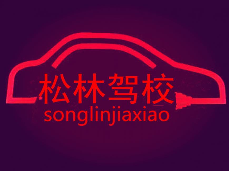 上海松林驾校